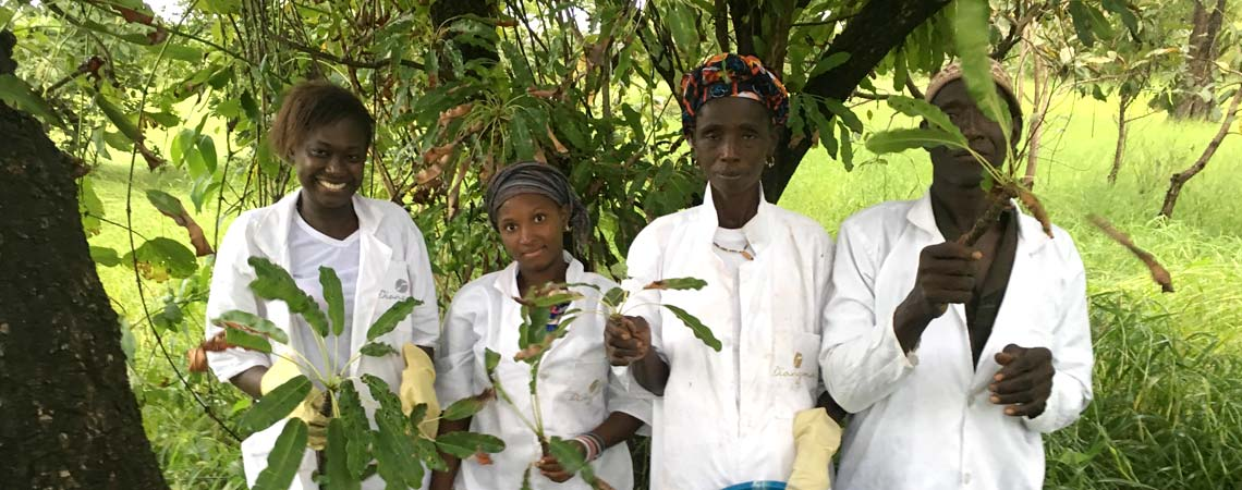 diongoma-karite-bio-blog